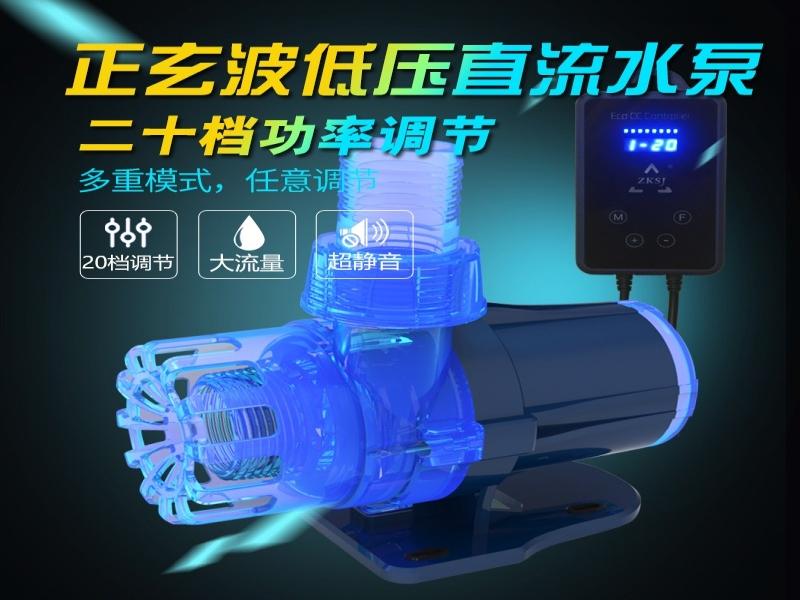 泳池水泵 泳池循环泵流量30吨每小时